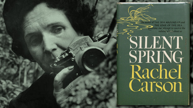 rachel carson - silent spring - environmentalist - environmental protection - environment - activism - global warming - an organic converation - helge hellberg - podcast - education - inspiration - green media - green living