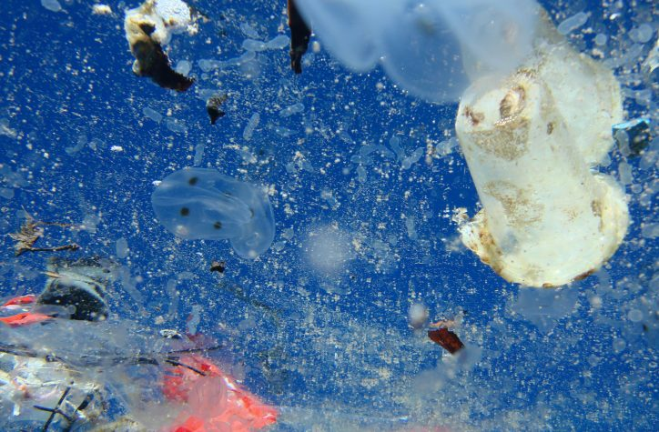 plastic pollution - a plastic ocean - documentary - science - environment - plastic - waste - film - an organic conversation - education - inspiration - green media - green living - helge hellberg