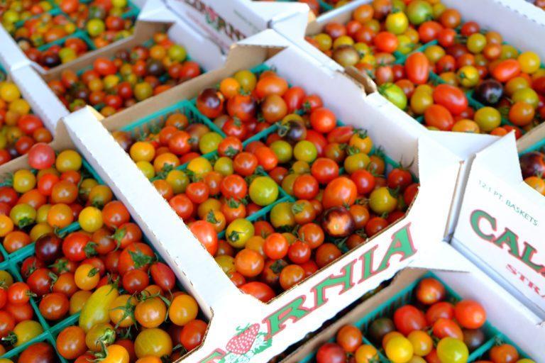 late summer produce - earl's organic produce - organic produce - seasonal produce - summer produce - organic agriculture - seasonal food