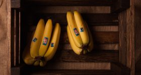 banana ripening - how a banana ripens - stages of banana ripening - ripe banana - how to ripen a banana - bananas - organic bananas - organic banana - fair trade bananas