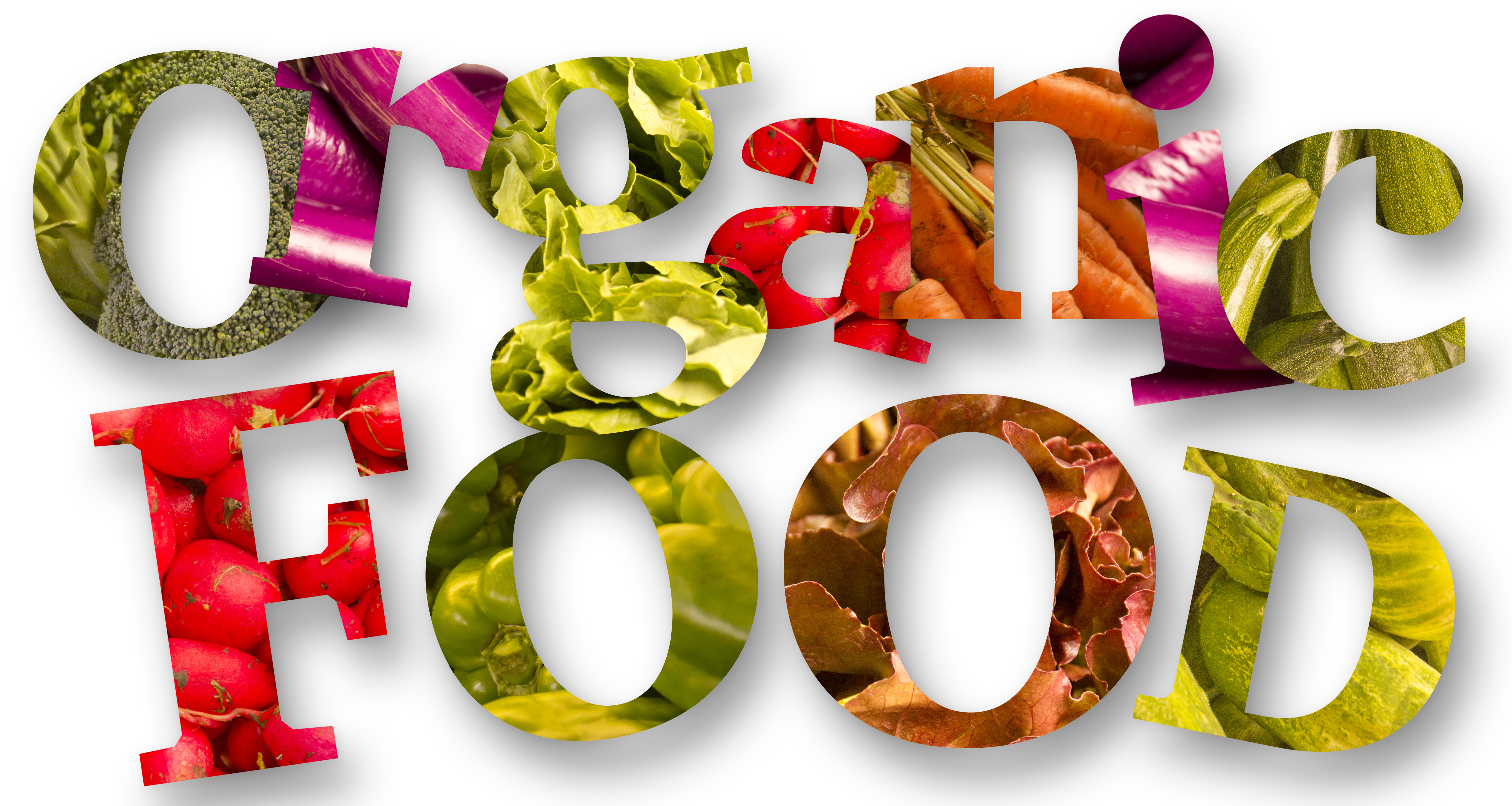 going organic - pets - organic pet food - dog health - healthy dogs - organic dog food - fur babies - organic pets - dogs - cats - pets