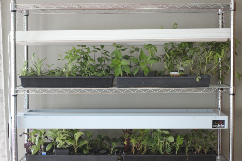 diy light grow rack - how to make a light grow rack - how to make a grow rack - diy grow rack - gardening grow rack - make your own gardening grow rack