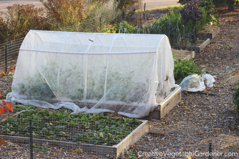 How to prepare your vegetable garden for winter aoc - How to prepare garden for winter ...