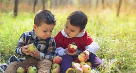 chronic illness in children - GMO's - GMOs - GM foods - GM foods and health - children's health - children's health food - kids health food - kids sickness food