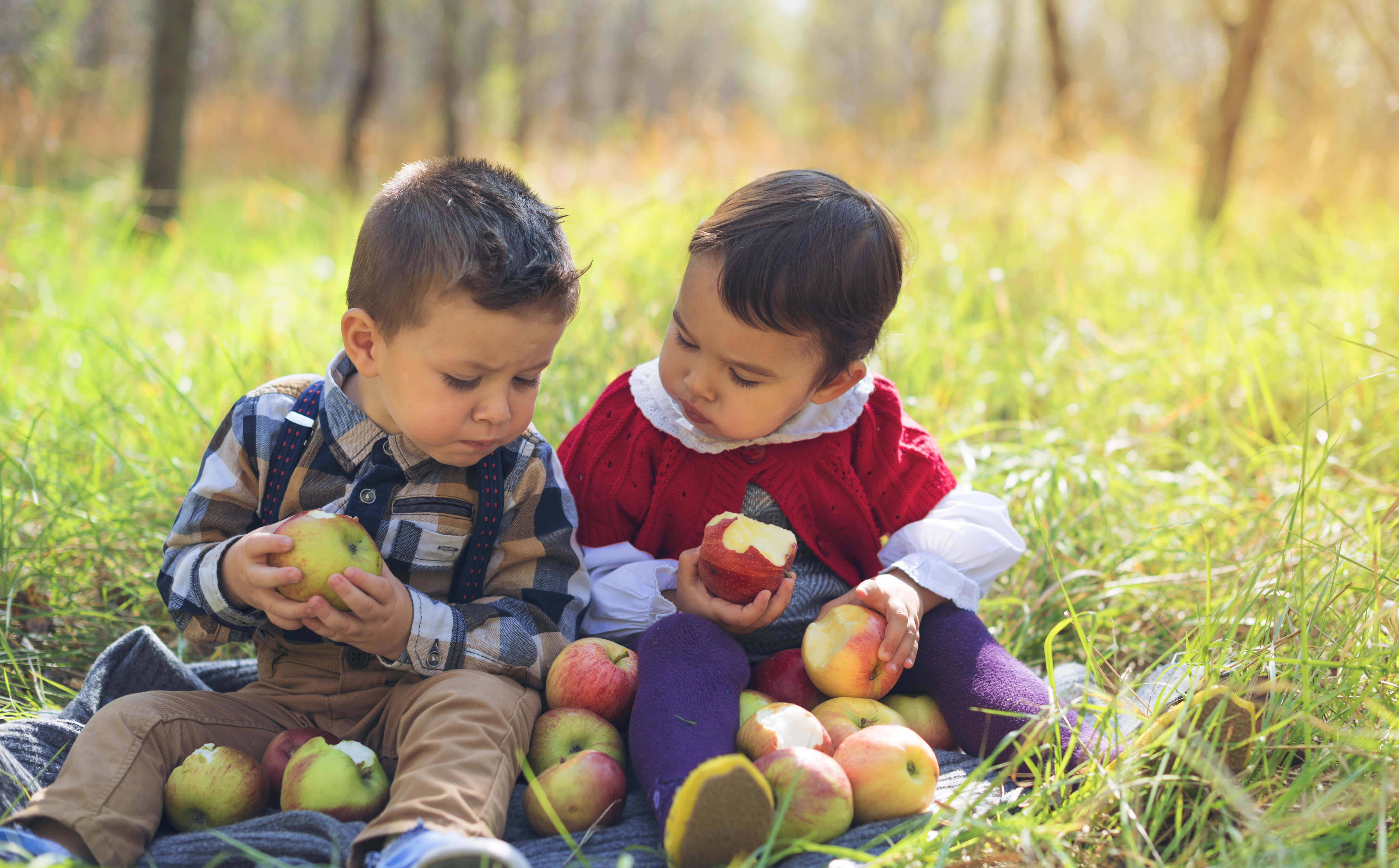 chronic illness in children - GMO's - GMOs - GM foods - GM foods and health - children's health - children's health food - kids health food - kids sickness food